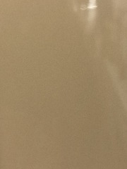 Rust-Oleum Gloss Protective Enamel Spray Paint  (Tan)