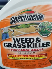 Spectracide Weed & Grass Killer Concentrate 32 oz.