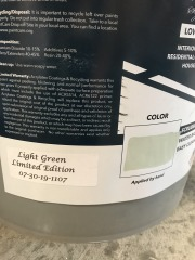 Montage Paint - 5 gal. - Lt. Green