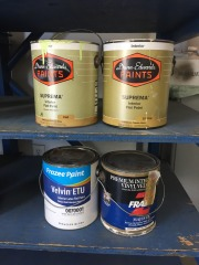 GENTLY USED Paint One Gallon