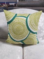 Green & White Throw Pillow