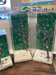 Beautiful Birch Trees for Village